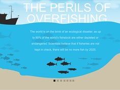 The Perils of Overfishing by KarBel Multimedia