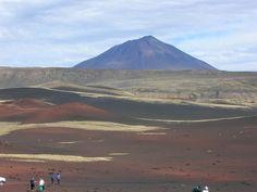 Reserva Total La Payunia La Payunia es una extensa región ubicada en el Departamento de Malargüe, al sur de la Provincia de Mendoza. Situada a 72 km al sudoeste de la ciudad, se extiende entre la porción sur de la Cordillera Principal y el extremo austral del Bloque de San Rafael.  El paisaje se presenta como un territorio volcánico cubierto de un manto de lava negra. La diversidad vulcanológica convierte a la Payunia en un paraíso para los expertos.