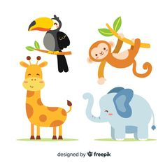 Collection of flat tropical animal Free .