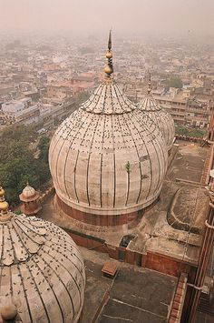 View from the minaret of the Jama Masjid, Old Delhi, India