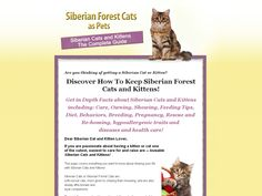 [Get] Siberian Forest Cats As Pets - http://www.vnulab.be/lab-review/siberian-forest-cats-as-pets ,http://s.wordpress.com/mshots/v1/http%3A%2F%2Fforexrbot.magpie403.hop.clickbank.net