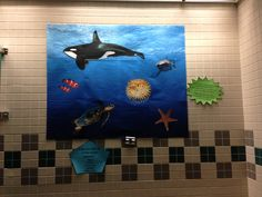 Children S Display And Space Ideas On Pinterest Library