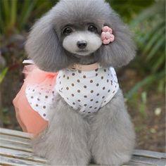 Summer Dog Clothes Dress Pet Wedding Tulle Tutu Skirt Chihuahua Puppy Clothes Mascotas Vestido Cute Dog Dress Product DDMX444