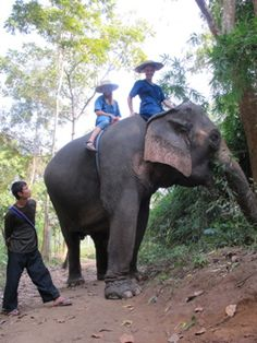 My best friend, Nicki & I riding our elephant in Thailand.  SO awesome! :)