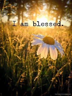 Yes I am! HF~