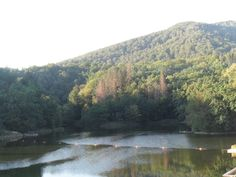 Bear LSovata - Romania | The village close to Radu's cabinake-Sovata,Romania | Lacul Ursu (Bear Lake)