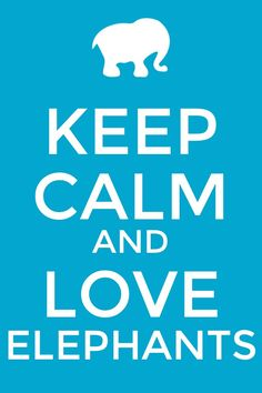 Keep Calm and Love Elephants ~ please remember they are being slaughtered in alarming numbers for their ivory.