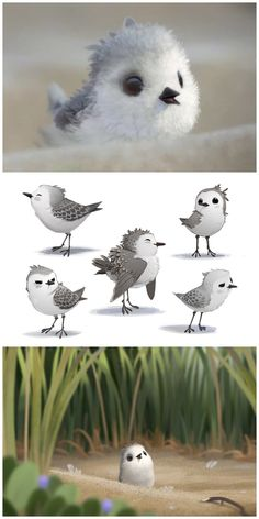 New images and concepts from Pixar's Piper (2016)