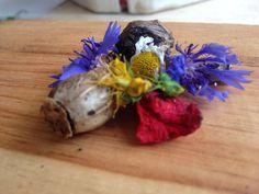 © organisch und bio | art und werk.  #essbareblüten #tischdekoration #blütenzauber #blütenundsamen #juni #samen #wildblumen #nachhaltigesdesign  www.art-und-werk.de