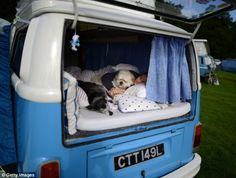 Jo Thompson from Leeds sleeping with her dogs Bojangles and Basil in her VW camper van