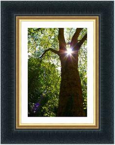 Qu'est-ce que l'utile si ce n'est un éclairage naturel pour notre bien être http://www.blog-habitat-durable.com/quest-ce-que-lutile-si-ce-nest-un-eclairage-naturel-pour-notre-bien-etre/