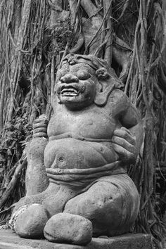 The ogre Photo by Terry Allen — National Geographic Your Shot