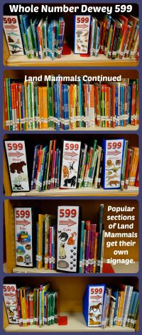 Whole Number Dewey - Eliminate the decimals in your library's Dewey call numbers to simplify the process of finding a book. | A Wrinkle in Tech blog by Mrs. J in the Library