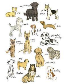 Woof Print by trafalgar's square on Zulily Dog nursery Dog Illustration, Illustrations, Puppy Nursery, Great Dane Dogs, Old English Sheepdog, Cartoon Dog, Dog Art, Pets, Animal Drawings