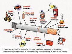 TOBACCO CIGARETTES ARE JUST BAD! The tobacco cigarette-components.jpg (1101×842)