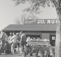 Sargents Nursery - History: We celebrate 85 years in 2013. Take a look at our garden center many years ago.