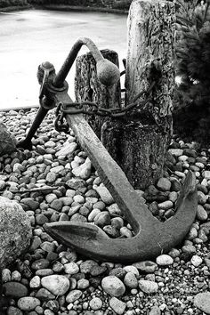 Anchor Art Print by Alison Tomich. All prints are professionally printed, packaged, and shipped within 3 - 4 business days. Choose from multiple sizes and hundreds of frame and mat options. Black And White Picture Wall, Black And White Pictures, White Art, Fishing Photography, Art Photography, Anchor Pictures, Anchor Art, Ship Anchor, Photo Vintage