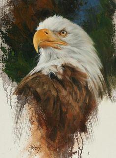 Wildlife Paintings, Wildlife Art, Animal Paintings, Eagle Face, Bald Eagle, Eagle Bird, Bird Drawings, Animal Drawings, Horse Drawings