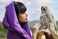 Online Wisdom Card Reading 2017, Wisdom Card Reading, Email Wisdom Card, folklore, mystical priestess's, gentle guidance, mystical, magical, guidance