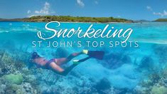 St Johns TOP SNORKE