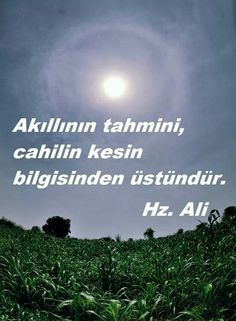 Hz . Alī