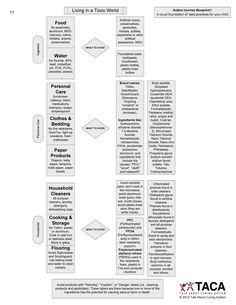 Navigating Autism: AJ Blueprints – Living in a Toxic World Visual Chart. http://www.tacanow.org/wp-content/uploads/2011/12/AJ-Blueprints-Living-in-a-Toxic-World.pdf