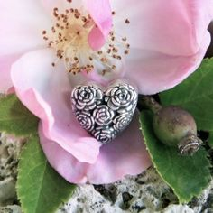 Heart of Roses The Rose is considered a symbol of balance. The beauty of the Rose expresses promise, new beginnings and hope…
