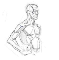 M1::  Simple side and front plane breakdowns made more specific to anatomical structures.