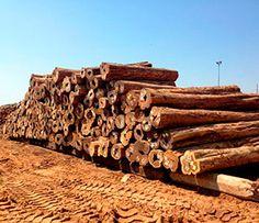En EGA Comercio de la Madera llevamos muchos años trabajando para ofrecer un servicio de calidad en la venta de madera en Palau-Solità i Plegamans. Visítenos.