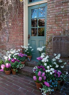 Painted front door with spring bulb containers