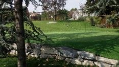 Backyard putting green Backyard Putting Green, Artificial Turf, Grass, Golf Courses, Astroturf, Grasses, Herb