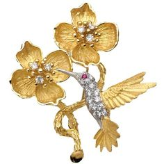 Yellow Gold Hummingbird Pin With Diamonds ($7,500) ❤ liked on Polyvore featuring jewelry, brooches, yellow gold jewelry, beaded jewelry, diamond jewellery, beads jewellery and beading jewelry
