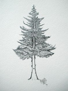 how to draw pine trees szukaj w google
