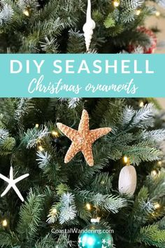 Bring the beach home for the holidays! Here are three quick and easy beach Christmas ornaments to make with seashell crafts - sand dollars starfish and spiral seashell ornaments to DIY coastal Christmas decor. Tropical Christmas Ornaments, Beach Christmas Ornaments, Elegant Christmas Decor, Coastal Christmas Decor, Nautical Christmas, 3d Christmas, Christmas Tree Decorations, Seashell Ornaments, Seashell Crafts