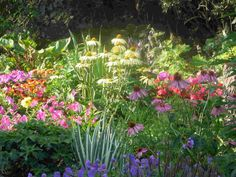 small garden design � landscaping photos, 2048x1536 in 97.5KB, 2048x1536 in 97.5KB