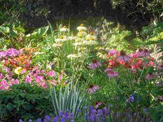 Perennial Garden Design Plans | 11 | October | 2010 | Sound Colour Vibration (Music | Art | Film ...