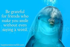 Be grateful for friends who make you smile without even saying a word... that is Niice Stuff!