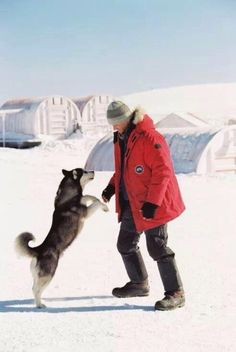 Paul Walker - Eight Below