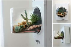 15 Lovely Terrariums That Would Liven Up Any Room | Mental Floss http://mentalfloss.com/article/57569/15-lovely-terrariums-would-liven-any-room