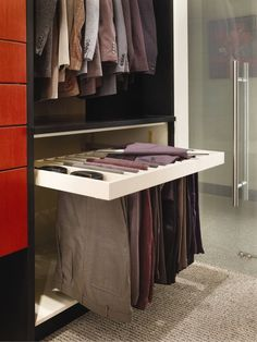 pullout pants rack....definitely a must for theater closet! And totally easy to build & install!!!