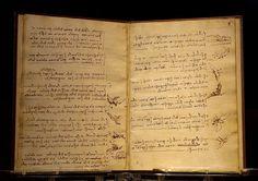 Da Vinci codex du vol des oiseaux Luc Viatour - Léonard de Vinci — Wikipédia