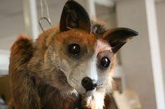 Fox Puppet by ~Nectarine on deviantART