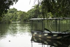 Barely 3-4 hours from Bangalore, the beautiful Ranganathittu Bird Sanctuary is a day visit.