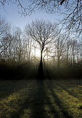 TEGENLICHT licht naar de beschouwer toe