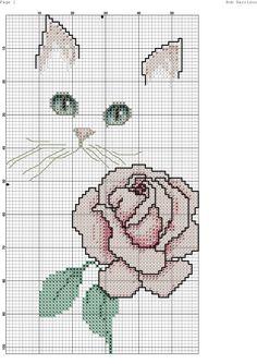 gatto con rosa-3