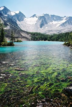 The Purcell Mountains, British-Columbia, Canada
