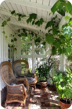 Perfect chairs & porch to read