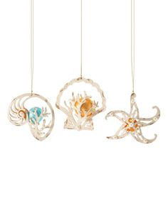 Look at this Whitewashed Shell Ornament Set on #zulily today!