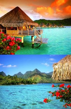 Dream+Honeymoon+Destination+-+Bora+Bora..jpg 468×714 pixels