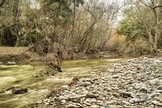 Alameda Creek, Sunol regional Wilderness